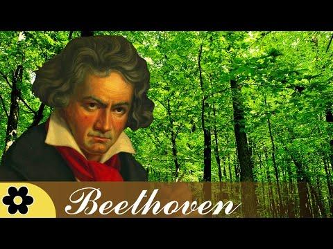 Música para Reducir Estres, Música Clásico para Relajante, Música Instrumental, Beethoven, ♫E107D - Поисковик музыки mp3real.ru