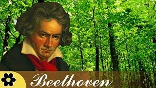 Música para Reducir Estres, Música Clásico para Relajante, Música Instrumental, Beethoven, ♫E107D