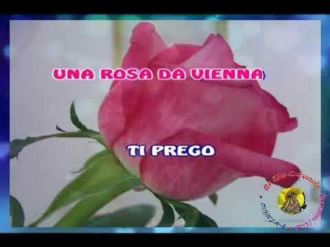 Anna Identici - Una rosa da Vienna (karaoke - fair use)