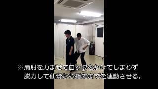 【武術的身体操作】中国語で言う「腰(yao)」の力の伝え方(18年1月補助教材)(#177)