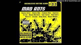 Dj Shakka - Mad Ants Riddim Mix - 2002 / mix 1
