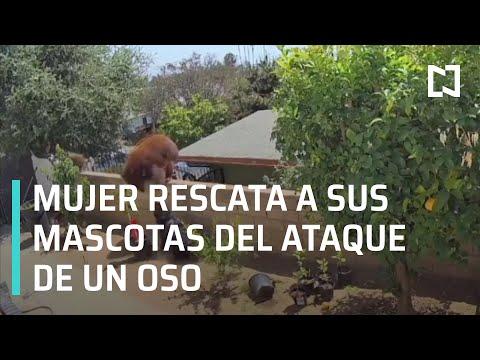 Mujer rescata a sus mascotas del ataque de un oso - Las Noticias