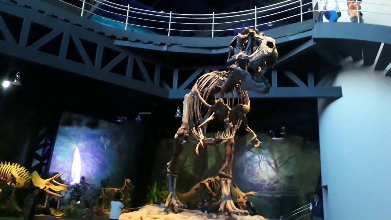 Museo de la Evolución, Tehuacán