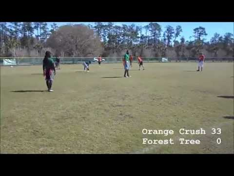 February 7, 2015 (Orange Crush vs. Forest Tree) - Week 4 Idlewild Winter League