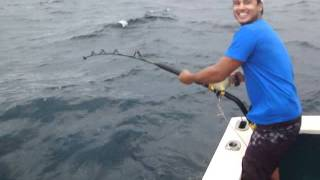 Pesca de Tubarao 2011