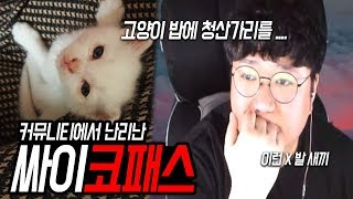 ※오늘의이슈※ 고양이밥에서 청산가리가... 진짜쓰레기 사이코패스 이야기(노래하는코트)