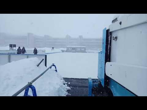 Снежное утро в Японии