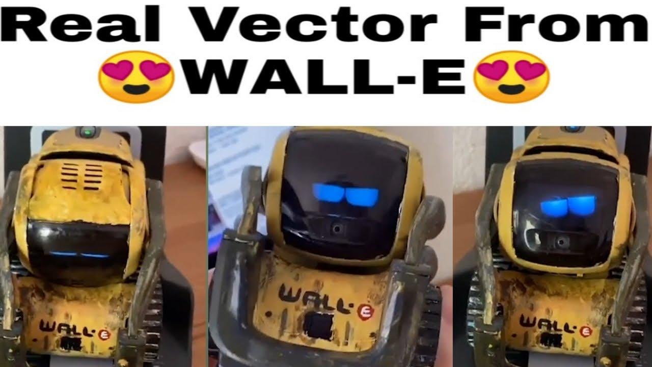 Vector Robot From Wall E 😍  Best Desktop Pet ❤️  He Learn New ...