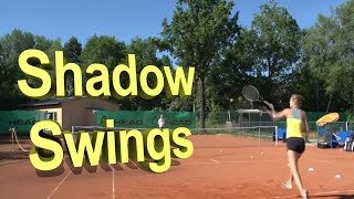 Shadow Swings