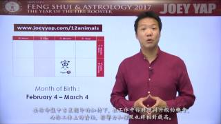 2017 Animal Sign Forecast: TIGER