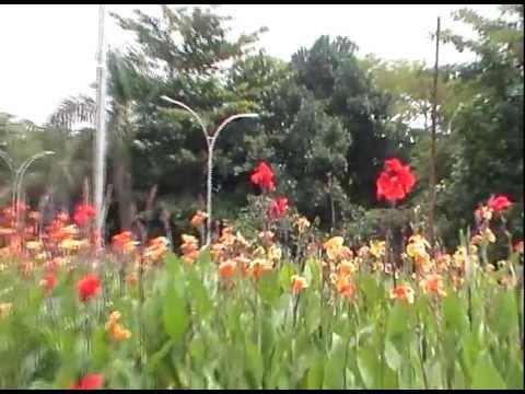 Taman Tegallega Ruang Terbuka Hijau Taman Kota Di Bandung Part