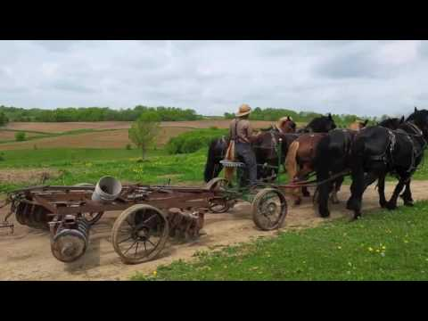 Amish Farming - 6-horse Power Plow