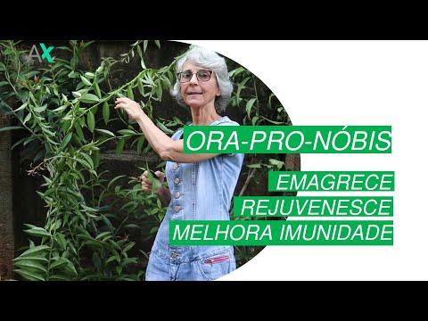 Ora-pro-nóbis - Emagrece, Rejuvenesce, Melhora Imunidade