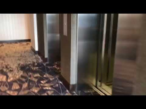 Awesome kone elevators at the hilton garden inn at patriot place foxboro ma youtube for Hilton garden inn patriot place