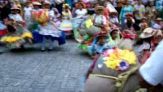 COMPARSA BURRIQUITA APURE EN CATEDRAL DE SAN FERNANDO.MOV