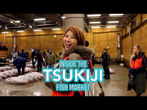 A local's guide to the Tsukiji Fish market!
