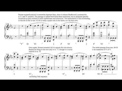 Beethoven - Symphony No. 5, Op. 67, Allegro con brio (harmonic analysis)