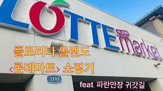 플로리다 올랜도 롯데마트 쇼핑기 feat. 파란만장 귀…