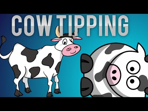 The Cows Are Watching - cow tipping |