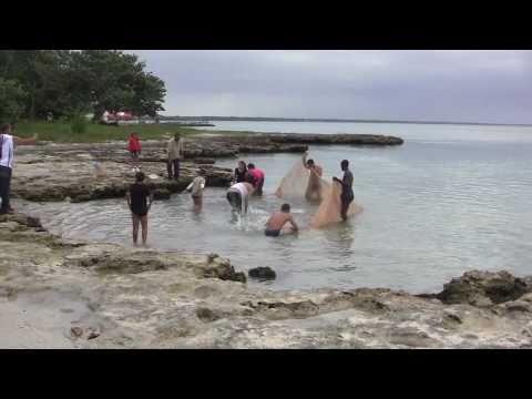 Playa Larga (Long Beach), Bahia de Cochinos, Cuba - 6th November, 2010