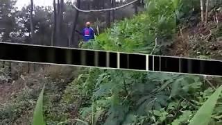 MABAL TRAIL ADVENTURE - NAPAK TILAS TREK BAH IYON KEBON KOPI