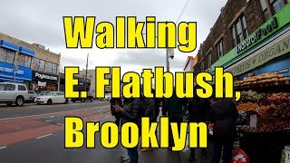 ⁴ᴷ⁶⁰ Walking East Flatbush, Brooklyn, NYC : Church Avenue, New York Avenue, & Utica Avenue