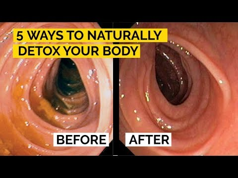 How to Naturally Detox Your Body 5 Simple Ways