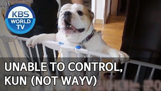 Unable to control, Kun (not WayV) [Dogs are incredible/ENG/2020.04.07]