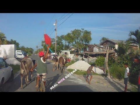 Independence Street La Grange W.B.D Guyana ( HD )