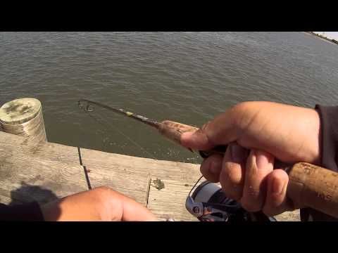Fishing for Bluefish at the Absecon Bay (Atlantic City, NJ)