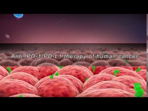 Anti–PD-1/PD-L1 therapy of human cancer(with sound track)