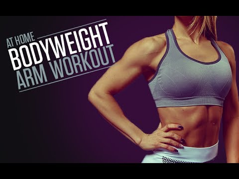 home arms workout for women at home  bodyweight  no