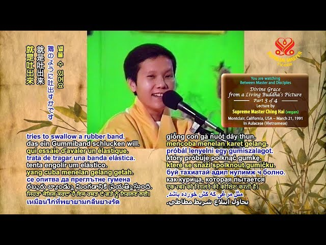 P4-4 | Divine Grace from a Living Buddha's Picture