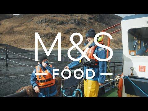 100% Scottish Salmon   Episode 2   Fresh Market Update   M&S FOOD