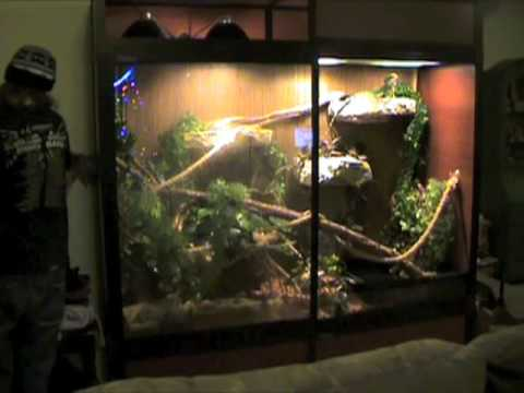 Huge Water Dragon Cage Cagesbydesign Youtube