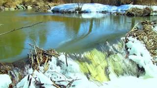 Laramie River Laramie River Ra Views — VACA