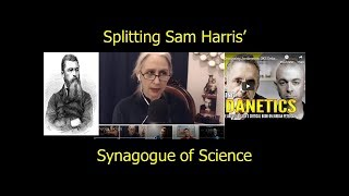 Jordan Peterson, Vox Day, Rachel Brown, Feuerbach, Splitting Sam Harris' Synagogue of Science