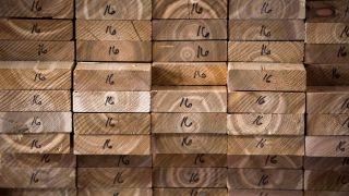 Trump proposes 20% tariff on Canadian lumber