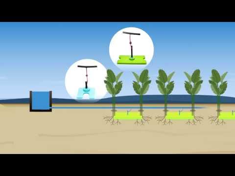 Diffuseurs d'eau - Tunisie - 100 innovations pour un développement durable pour l'Afrique