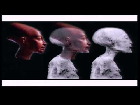 Brien Foerster: The Enigma of the Elongated Skulls FULL LECTURE