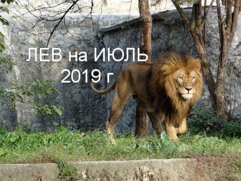 ЛЕВ на ИЮЛЬ 2019 г от J Dzay