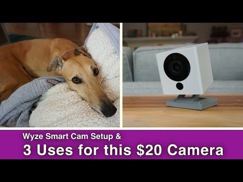 3 Uses for this $20 Smart Home Camera