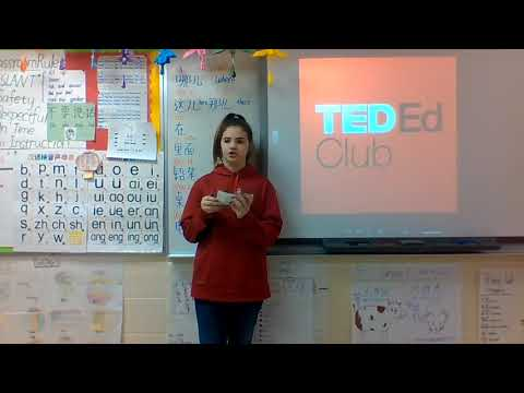 Diabetes Can Be Prevented | Hannah Cornett | East Hardin Middle School