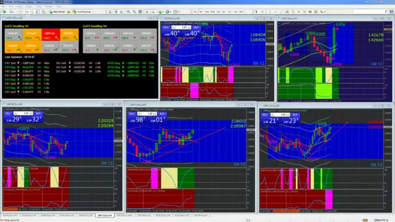 Watch forex trading live