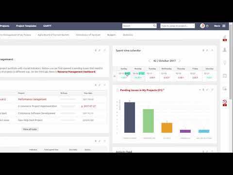 Time Tracking - Easy Redmine 2018 - YouTube