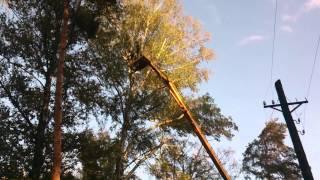 Спил деревьев на автовышке(, 2014-11-11T14:44:08.000Z)