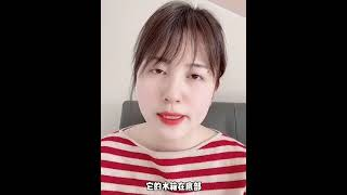 스팀 청소기 영상