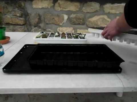 syst me d 39 irrigation de la mini serre youtube. Black Bedroom Furniture Sets. Home Design Ideas
