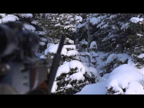 The Choice  - Return To The Deer Hunter's Fantasy Island...Anticosti