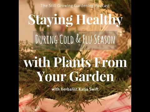SG594: Staying Healthy During Cold & Flu Season with Plants From Your Garden with Herbalist...